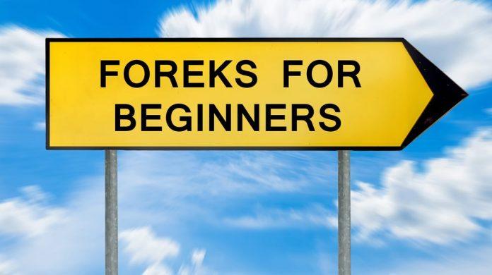 Forex nur was für Anfänger?